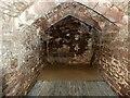 SO5719 : Goodrich Castle - Dungeon beneath the keep by Rob Farrow