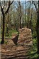 SX8863 : Biking course. Scadson Plantation by Derek Harper