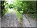 SO2808 : Field gateway by Philip Halling