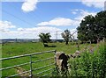 NZ1650 : View from a gateway on Tower Road by Robert Graham