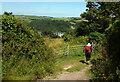 SX8751 : Gates by Jawbones Hill by Derek Harper