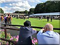 TL6161 : Trying to pick a winner - The July Course, Newmarket by Richard Humphrey