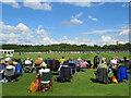 SK9033 : Grantham: enjoying cricket at Gorse Lane by John Sutton