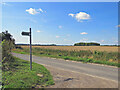 TL4449 : High summer in South Cambridgeshire by John Sutton