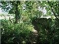 SK3349 : Narrow Lane by Ian Calderwood