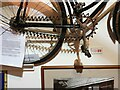 SO0660 : National Cycle Museum - the Simpson Lever Chain by Oliver Dixon