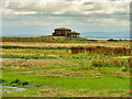 NY0565 : Caerlaverock Wetland Centre, Salcot Merse Observatory by David Dixon