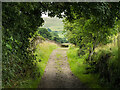 NY6139 : Public way leaving Gamblesby by Trevor Littlewood