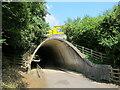 SU7595 : Farm road tunnel under M40 motorway by David Hawgood