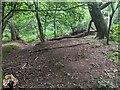 TF0820 : A drainage gully by Bob Harvey