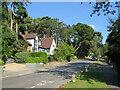 SZ0490 : Links Road, near Poole by Malc McDonald