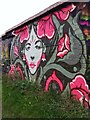 SP3380 : Femme fatale, Coventry Canal by Alan Paxton