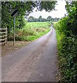 ST4299 : End of the 30 zone, Llanynant Road, Llangwm, Monmouthshire by Jaggery