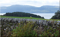 NR9278 : Loch Fyne from the B8000 Road by Thomas Nugent