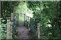 SN4221 : Gated footbridge behind Abergwili Road by M J Roscoe