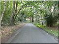 TG2628 : South on Skeyton Road by David Pashley