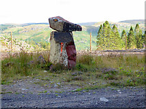 NR9975 : Rock art by the  A8003 road out of Tighnabruaich by Thomas Nugent