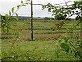 NS9259 : Rough pasture near Fauldhouse by M J Richardson