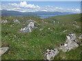 NM7937 : Limestone and flowers, Druim Mòr by Richard Webb