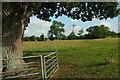 SP0633 : Field on Cotswold Way by Derek Harper