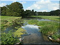 SE8675 : Pollution below the cascade, Scampston by Christine Johnstone