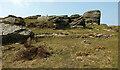 SX6981 : Hookney Tor by Derek Harper