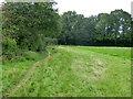 TQ3638 : Public footpath 40cEG towards the Worth Way by Robin Webster