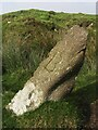 SX6669 : Old Boundary Marker at Bourne's Pit by T Jenkinson