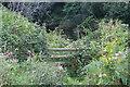 SO3602 : Stile on left bank of  River Usk by M J Roscoe