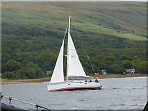 NS0274 : Yacht in the Kyles of Bute by Thomas Nugent