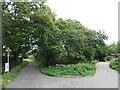 SZ3294 : Normandy Lane, near Lymington by Malc McDonald