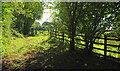 SX8467 : Track and gate near Clannon Farm by Derek Harper