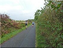 SK1607 : Bridleway on Whittington Ranges by Richard Law