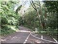 TQ5560 : Tinker Pot Lane, near West Kingsdown by Malc McDonald