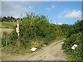 TQ5859 : North Downs Way, near Wrotham by Malc McDonald