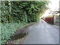 TQ6662 : White Horse Road, near Vigo by Malc McDonald