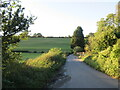 TQ6465 : Whitehill Road near Meopham by Malc McDonald