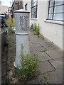 ST5772 : Warming the flowers by Neil Owen
