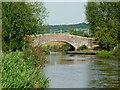 SJ9330 : Long Meadow Bridge near Burston in Staffordshire by Roger  Kidd