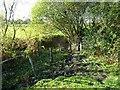 SO9093 : Stream Stile by Gordon Griffiths