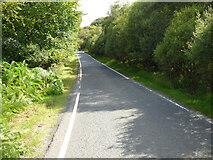 NR9572 : The B8000 road by Thomas Nugent