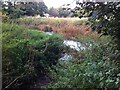 SP3069 : Confluence of the Cattle Brook and the River Avon by Alan Paxton
