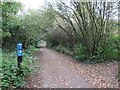 SE3156 : National Cycle Network route 67, Harrogate by Malc McDonald