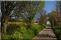 TM3458 : Church Road, Little Glemham by Christopher Hilton