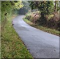 SO3400 : National Speed Limit signs, Glascoed, Monmouthshire by Jaggery
