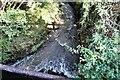 TQ7323 : Glottenham Stream flowing north east from Bishop's Lane, Robertsbridge by Patrick Roper