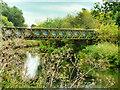 SP9468 : Footbridge over the River Nene by David Dixon