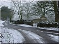 SO8601 : Burleigh Lane by Helena Downton