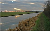 SP9122 : Grand Union Canal near Leighton Buzzard by Peter Roberts