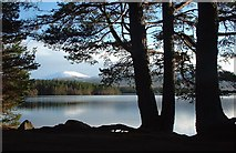 NH9718 : Tore Hill  - Aviemore area by Dorcas Sinclair